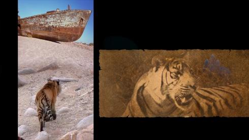 tiger-tiger-05